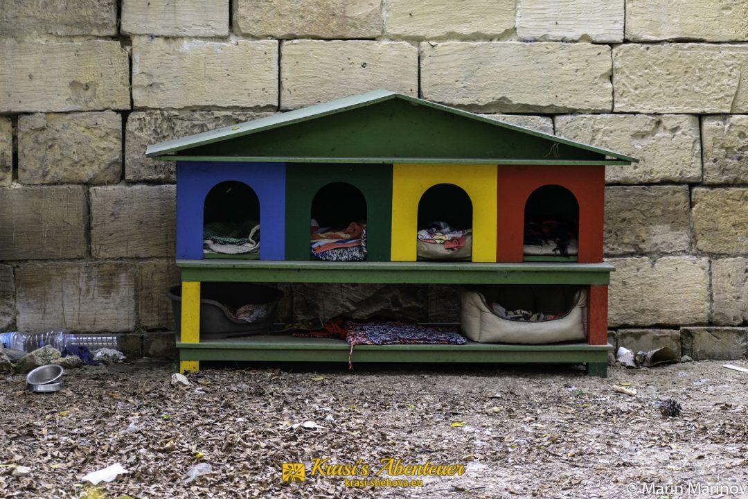 öffentliche Katzenunterkünfte / обществени къщички за котки