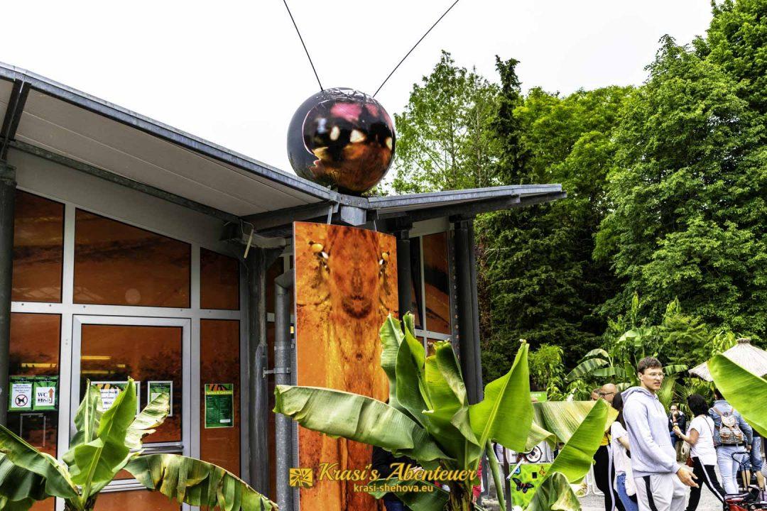 Къщата на пеперудите
