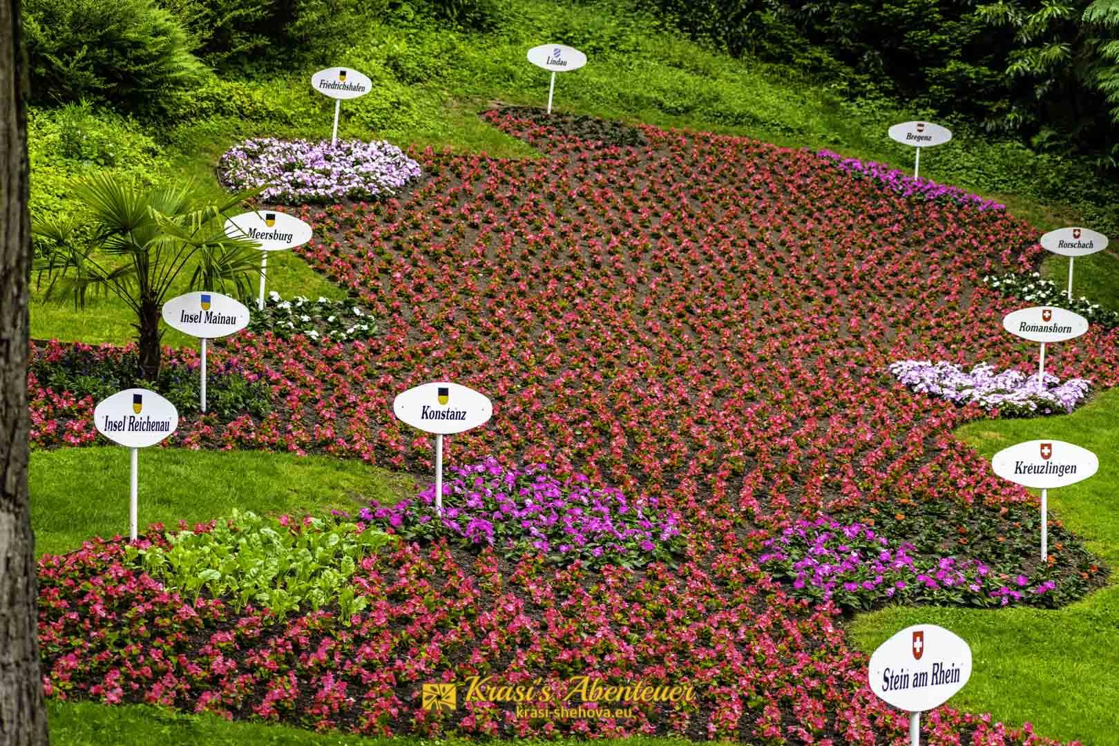 Бодензее направено от цветя